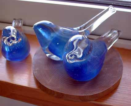 Birdglass